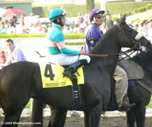 Zenyatta in BC Classic Post Parade