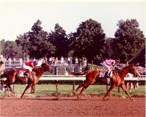 Affirmed and Alydar in 1978 Travers Stakes