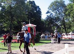 Saratoga Paddock