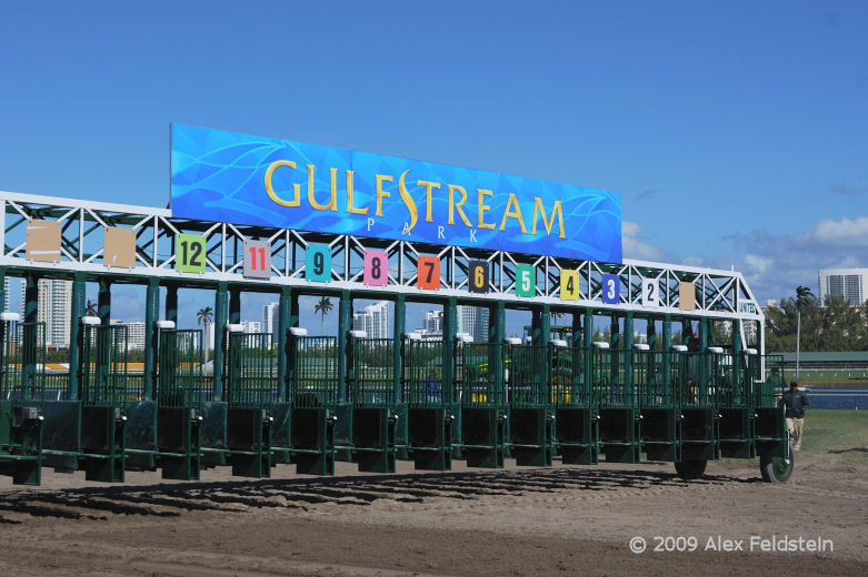 Free Gulfstream Park Picks - Jan 19, 2011 | Horse Racing Blog