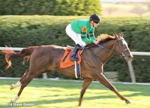 Rogue Romance - 2010 Bourbon Stakes