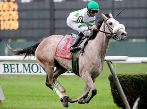 Winter Memories Horse Saratoga