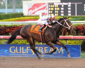 Gulfstream Park Horse