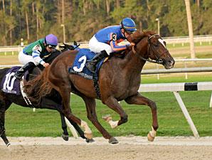 Battle Hardened Wins 2012 Sam F. Davis Stakes