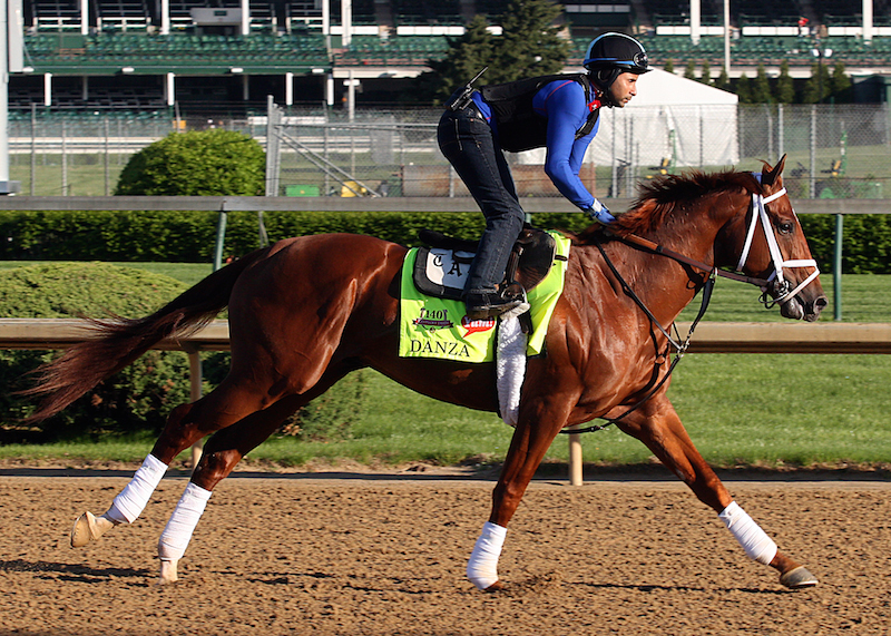 Pletcher's Danza checks out the Churchill surface on 4/26 (Photo: John C. Engelhardt)